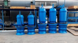 600QZB-100轴流潜水泵/农田灌溉用的潜水轴流泵/高质量大型排污泵
