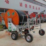 农用节水灌溉设备 大型喷灌机 平移式喷灌机 农业喷灌设备