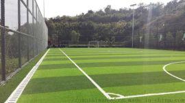 人造草坪  塑胶跑道专业施工