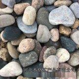 山东鹅卵石 3-5cm 砾石滤料0.5-2厘米