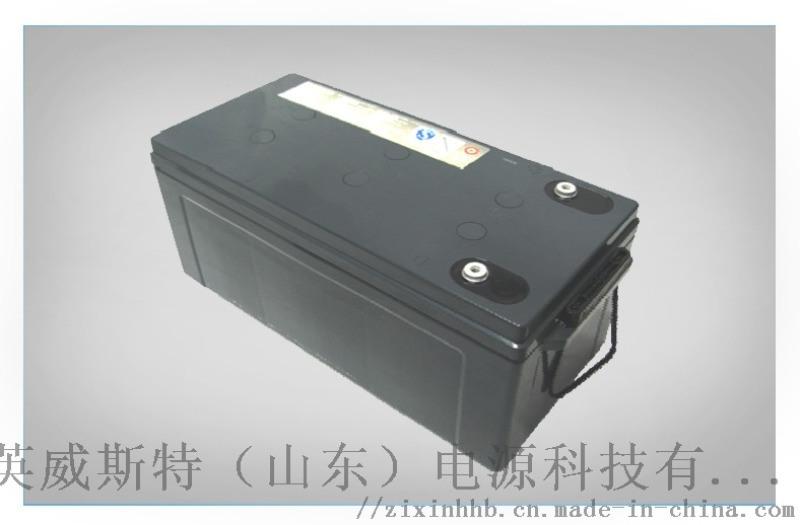 松下EPS/UPS蓄电池免维护铅酸蓄电池185Ah