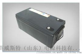鬆下EPS/UPS蓄電池免維護鉛酸蓄電池185Ah