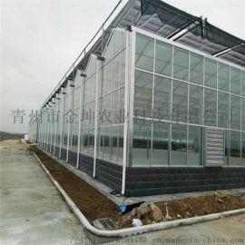 金坤阳光板温室设计 连栋阳光板温室大棚建造