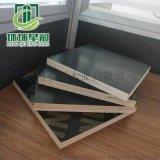 滨州木工支盒清水模板不变形多层胶合板星冠木业
