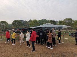 山西阳城飞机模型  模型出租