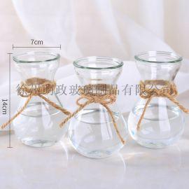 创意简约花瓶水培瓶植物花瓶风信子瓶插花瓶客厅摆件