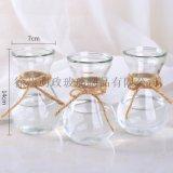 創意簡約花瓶水培瓶植物花瓶風信子瓶插花瓶客廳擺件