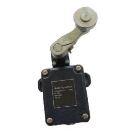 BLX501-10重锤限位器/耐高温限位开关