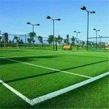 河北足球場 操場 室內外專用草坪
