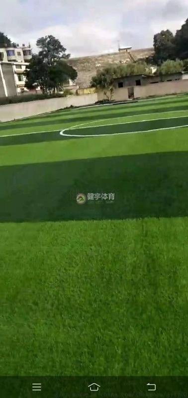 人造草坪足球场-草坪球场施工-草皮施工