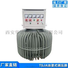 三相调压器 TSJA-300KVA油浸式调压器