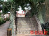 【陕西大棚】汉中市生态餐厅温室的园林植物配置