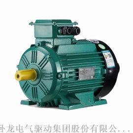 BROOK WE3高效率低压三相异步电动机