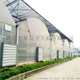 连栋薄膜温室建设 智能连栋大棚承建