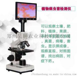HC-BCH植物病虫害观察仪