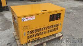 招投标项目可用汽油发电机 10kw