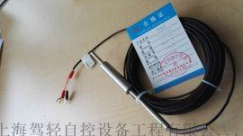 直型不锈钢护套,带引线的热电阻PT100