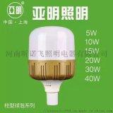 柱形球泡灯YM-ZJ-QP-5W-40W