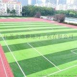 江苏艾迪雅足球场人工草坪一体化施工