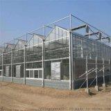 溫室廠家專業建設陽光板溫室造價陽光板溫室大棚