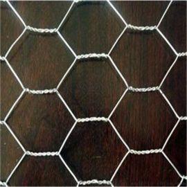 六角网 镀锌六角网 浸塑六角网