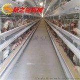 層階式蛋雞養殖雞籠 蛋雞自動化新之谷養殖雞籠