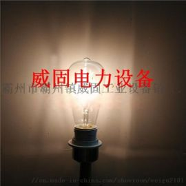 25W灯泡E27电工实训磨砂灯普通灯泡卤素灯泡