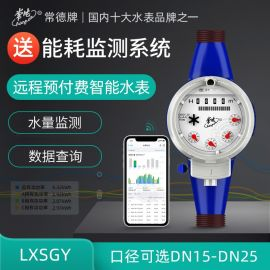 常德LXSGY远程预付费智能水表 4分小口径水表