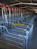 鸥美猪用定位栏,猪用栏位、限位栏、母猪栏