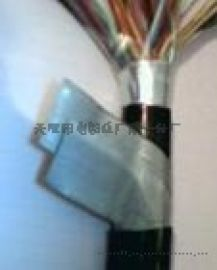 PZYA23-10×0.5铁路信号电缆
