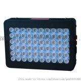 全光譜植物燈水果蔬菜花卉大棚植物大功率補光燈