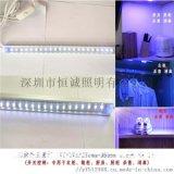 紫外线消毒灯 杀菌灯紫外线 0.5米 6W