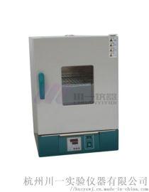电热恒温培养箱DH2500A