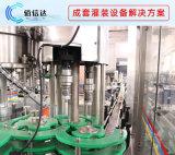 饮用水包装生产线 瓶装纯净水生产线