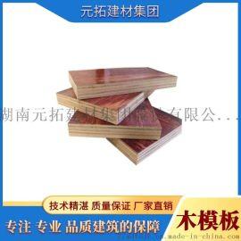 湖南木模板厂家直销使用次数多