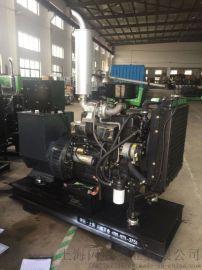 30KW纯铜无刷电机 柴油发电机组