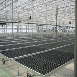 拉萨温室大棚移动苗床网节水环保省人工-专业团队