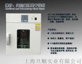 老化测试烘箱 小型精密 70L恒温干燥箱
