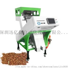 迅亿捷小型种子色选机种子加工设备