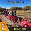 江苏南京景区安装长长的轨道网红小火车真好玩