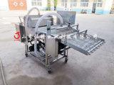 瀑布式虾仁上浆机, 全自动裹浆机