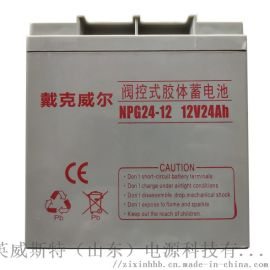 EPS/UPS蓄电池 长寿命蓄电池 24Ah免维护