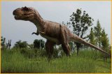 恐龍皮套生產基地出售