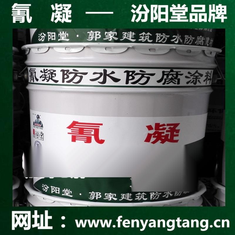 氰凝防水防腐塗料廠家直銷/耐酸耐鹼耐鹽水池防腐