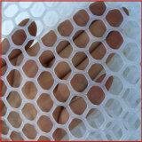 雞網牀養雞場建設 網牀養**糞 東莞塑膠料網廠家