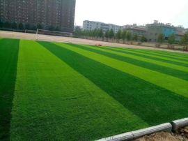 承接人造草坪   足球场施工