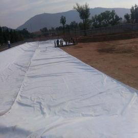 宁夏防水土工布, 500克二布一膜