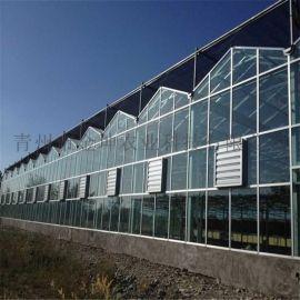 连栋智能温室设计 智能温室大棚建造
