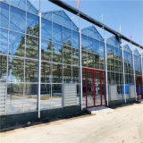 山东玻璃温室大棚厂家承接玻璃温室建设