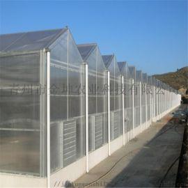 阳光板温室大棚造价 阳光板温室大棚设计
